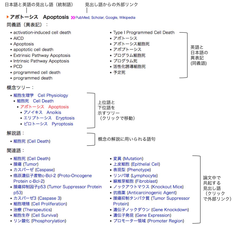 シソーラス検索|WebLSD|ライフサイエンス辞書プロジェクト
